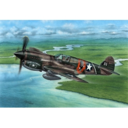 Special Hobby 72338 Curtiss P-40E 'Griffes et Dents'