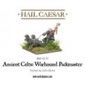 Celt Warhound Pack