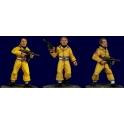Artizan Designs KKBB204 Guards