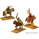 Crusader Miniatures DAN107 Unarmoured Norman Cavalry Command