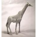 North Star AA07 Giraffe
