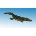 North Star AA15 Nile Crocodile