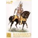 hat 8049 cavalerie alliés d'alexandre
