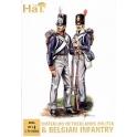hat 8096 infanterie hollando belge 1815