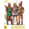 hat 8088 infanterie d'alexandre macedoniens