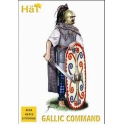 hat 8138 commandement celte