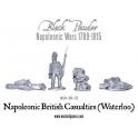 British Casualties (Waterloo)