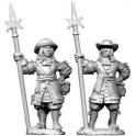 North Star GS14 French Sergeants