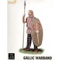 hat 9089 Guerriers celtes